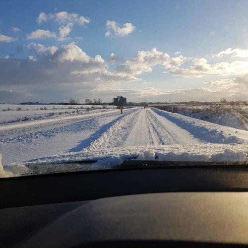 Let it snow - Prescient Business Consulting